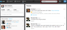 Twitter Profile Search