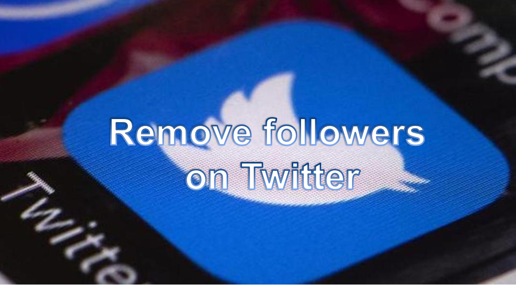 Remove Twitter Followers